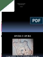 Ameba o Amebiasis