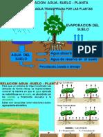 Relacion Agua Suelo Planta