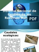 3d.ley de Recursos Hidricos Cueva Pachas