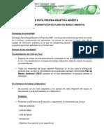 Hoja de Ruta Poa 358023 Implementacion Planes de Manejo Ambiental
