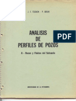 AnálisisdePerfilesdePozos.pdf