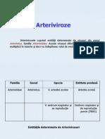 arteriviroze
