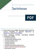 Flaviviroze