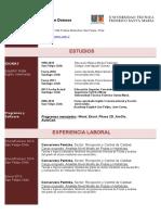 Adjunto CV Sebastian Donoso.pdf