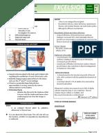 b17m03l08 Thyroid Nodules