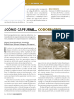0010002123 Como capturar codornices.pdf
