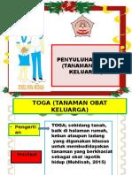 SAP Tanaman obat keluarga  (TOGA)