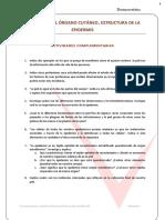Dermoestetica Actividades Complementarias Tema 1