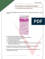 Dermis Hipodermis y Anexos Cutaneos. Actividades Complementarias
