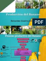 Proceso de la industria Bananera-Ecuador