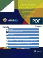SIG_GESTION_DE_PROYECTOS_210116.pdf