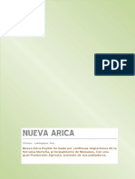 Monografia Nueva Arica