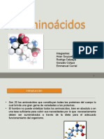 Seminario-aminoacidos