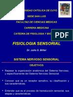 Somato- FISIOLOGIA