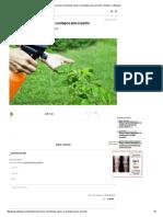 Cómo Hacer Insecticida Casero y Ecológico Para El Jardin _ Notas _ La Bioguía
