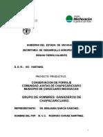 Conservacion de forraje comunidad juntas de chapacaricuaro.doc
