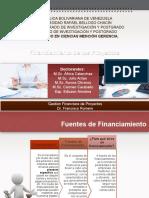 Presentacion de Gerencia Financiera de Proyectos