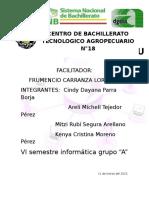 PROYECTO FRUME.docx