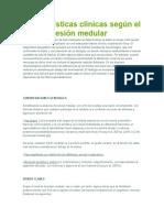 Características Clínicas Según El Nivel de Lesión Medular