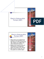 Electric Submersible Pumps (ESP).pdf