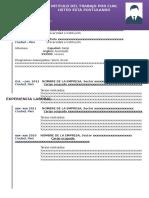 ADE CV.doc