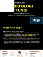 Microbiology - Fungi