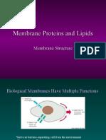 Membrane 1