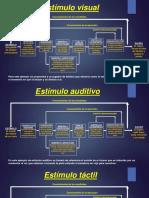 Esquema welford.pdf