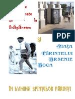 Grozaviile de La Draganescu Si Viata Par Arsenie Boca in Lumina Sfintilor Parinti v 111