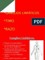 Ganglio Bazo Timo