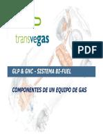 Componentes Que Forman Parte de Un Equipo de Gas