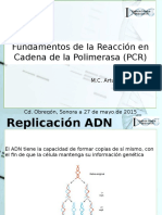 FUNDAMENTOS PCR.pptx