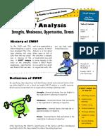 RTRI. Swot Analysis