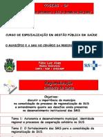 Regionalização Fábio Alves Curso de Gestão FUNDAP