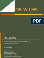 Tumor Wilms