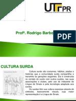 ASPECTOS CULTURAIS SURDOS.pdf
