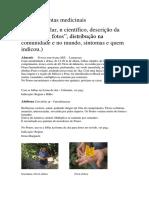 Guia-de-plantas-medicinais.pdf