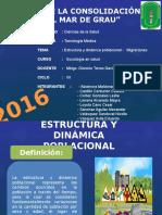 Estructura-y-dinamica-poblaciona-migraciones-grupo-N-3.docx-diapos.pptx