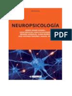 NEUROPSICOLOGIA- AFASIAS