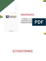 13. ECOSISTEMAS.pptx