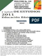 Resumen Del Plan de Estudios 2011