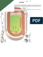 Atletismo Bala y Testimonio Campo