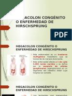 Megacolon CongMEGACOLON CONGÉNITO O ENFERMEDAD DE HIRSCHSPRUNG.pptxénito o Enfermedad de Hirschsprung