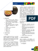 ficha tecnica  gulupa.pdf