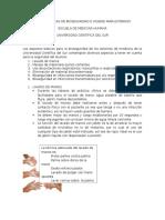 Normas Básicas de Bioseguridad e Higiene Para Externos