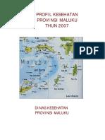 85560801-profil-maluku-2007.pdf