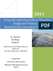 Using Microbial Fuel Cells to Treat Raw