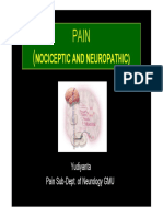 PAIN LECTURE 2010 YD [Compatibility Mode]