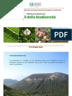 02 Livelli Della Biodiversità