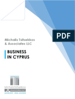 Michalis+Tsitsekkos+&+Associates+LLC brochure